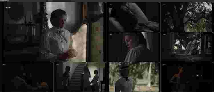 دانلود فیلم The Beguiled 2017 - دوبله فارسی - 720 , 1080 , 480 - فریب خورده دانلود فیلمThe Beguiled 2017 فریب خوردهبا دوبله فارسی وکیفیت عالی