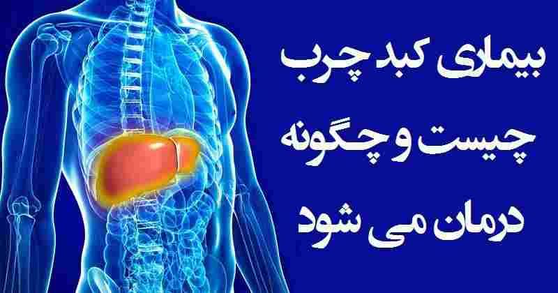 درمان و علائم کبد چرب در طب ایرانی اسلامی+ویدئو
