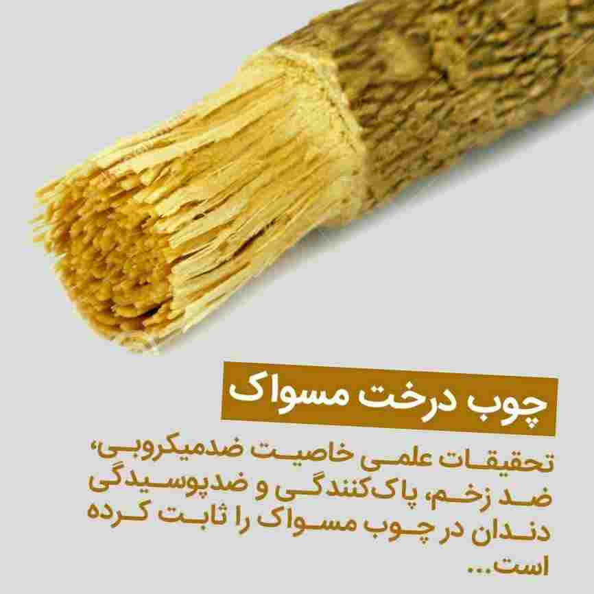 چوب اراک و مسواک در طب اسلامی