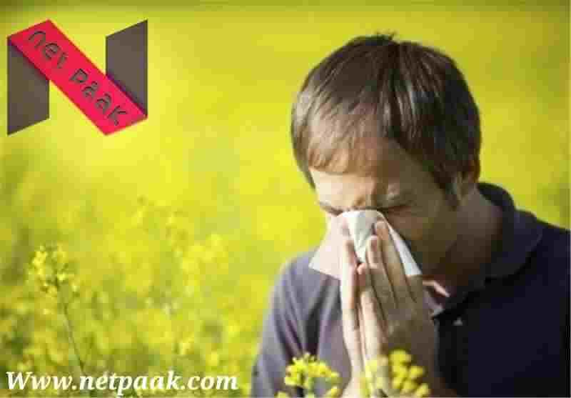 درمان آلرژی فصلی در طب اسلامی