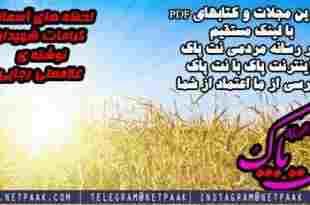دانلود کتاب PDF لحظه های آسمانی کرامات شهیدان - کتاب در مورد کرامت شهیدان - دانلود کتاب لحظه ی آسمانی