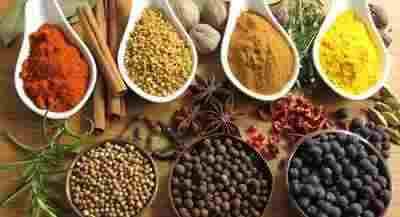 درمان سرد مزاجی و گیاهان دارویی مؤثر + طب سنتی