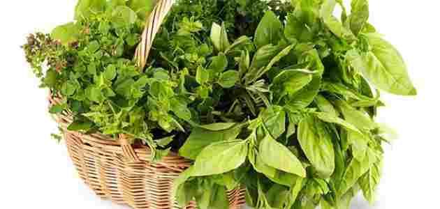 خواص انواع سبزی خوردن + فواید سبزی
