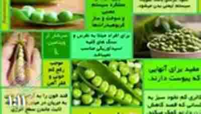 کلیپ خواص خوراکیها - نخود سبز + ویدئو