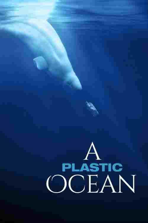 دانلود مستند اقیانوس پلاستیکی A Plastic Ocean 2016 + کیفیت 720