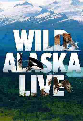 دانلود مستند حیات وحش آلاسکا - کیفیت بالا