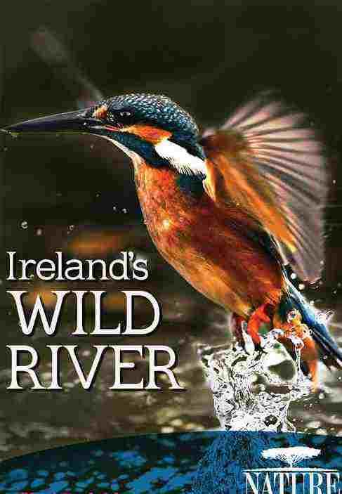 دانلود مستند رودخانه وحشی ایرلند + دوبله فارسی و کیفیت بالا