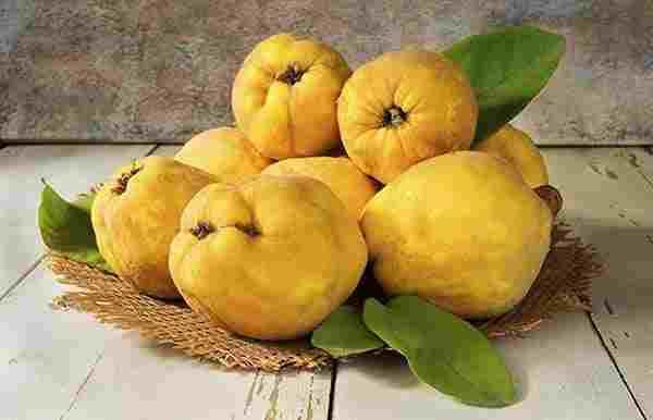 اهمیت میوه به از دیدگاه طب اسلامی