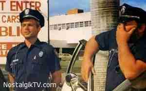 دو پلیس زبل